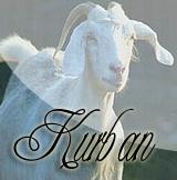 kurban_yan.jpg